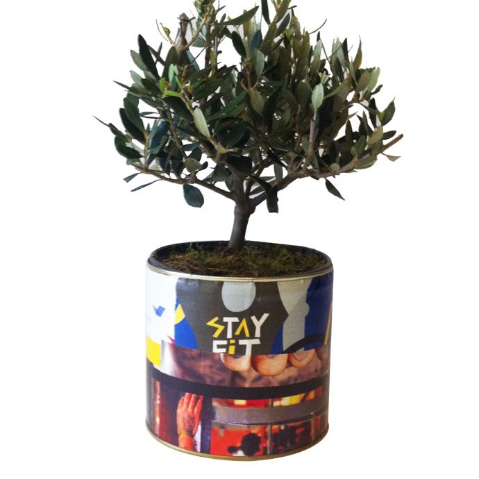 Handmade collage can with olive tree www.fleria.gr