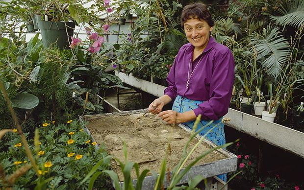 Lynn Margulis, who has died aged 73, was a microbiologist whose work on the…