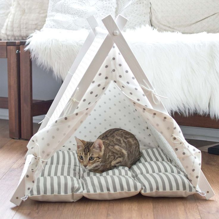 Best 25 Teepees Ideas On Pinterest: 17 Best Ideas About Cat Tent On Pinterest
