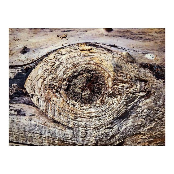 Imarchi    Ojo de madera _ Wooden eye      #wood #woodwork #wooden #madera #woodart #eye #timber #woodporn #eyedrawing #eyeball #imarchi #mobilephotography #fotografomovil #fotografomadrid #instagramspain #abstract #instaabstract #abstractart #fall #autumn #instafall #ojo    See it in Instagram http://ift.tt/2zXVnxP imarchi imarchi.com photographer fotografo Madrid Spain photography Phoneography iPhoneograp imarchi imarchi.com photographer fotografo Madrid Spain photography photo foto iphone…