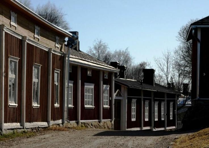 Komea talorivistö Naulamäessä, Rauma Finland. Kuva: Marko Taskinen