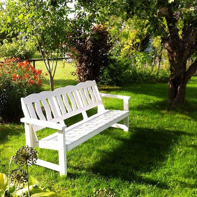 Kaffekoppen kunne jeg gjerne tatt på denne benken, men det er naboen sin#idyll #inspo #instamood #benk#hvitmalt#ro#atmosfære#morgenstund #hage#garden#bench#tre#tree#sol#sun#sommer#summer