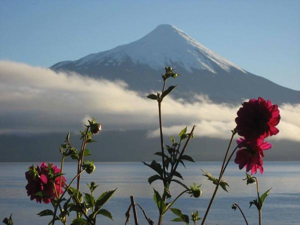Early morning view of the Osorno Volcano near Puerto Varas, Chile.