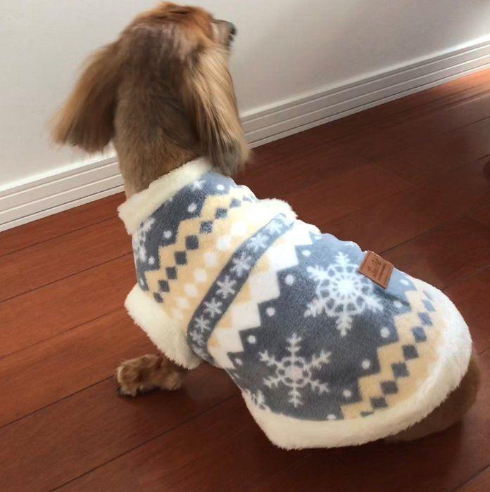 ダイソーのフワフワな冬用ペット服 愛犬に着せてみた いぬのきもちweb Magazine ペット服 かわいい ファッション 犬用の服
