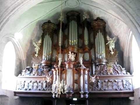 Ede Staal - orgel - Leens