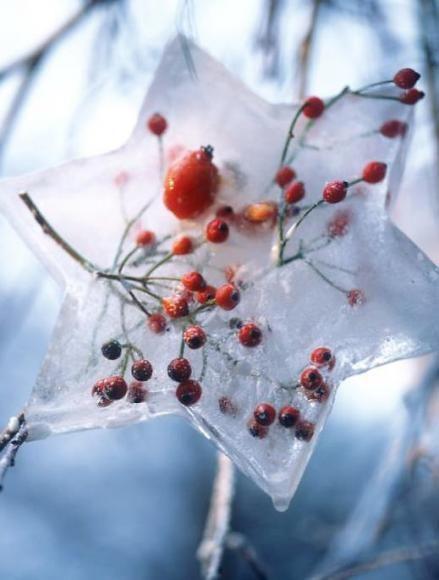 Wir zeigen, wie Sie mit wenig Aufwand märchenhaft schöne Eislichter und andere Eisdeko für den Garten herstellen.