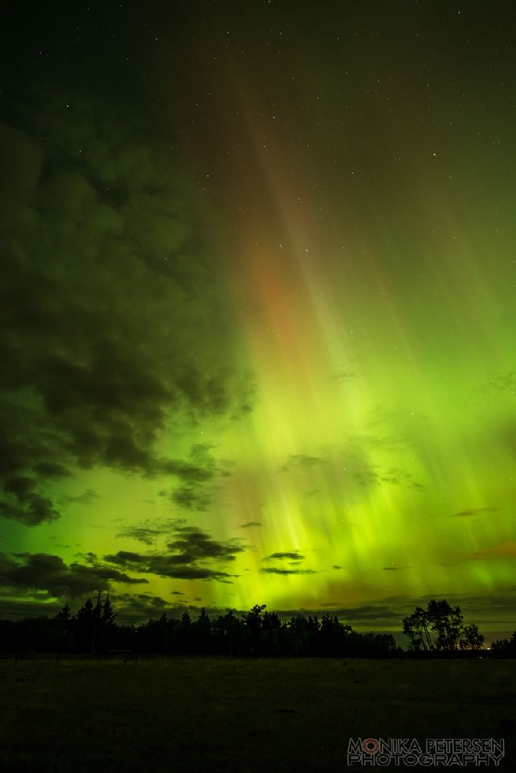 Northern Lights - Williams Lake, BC, Canada
