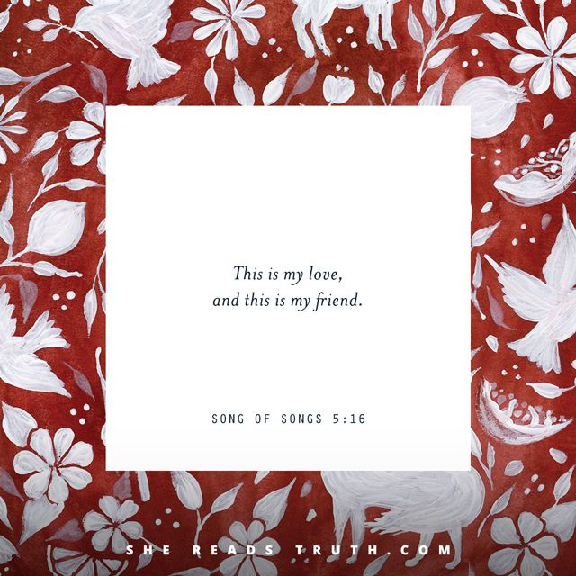 Day 8 of the Song of Songs Bible-reading plan from She Reads Truth. ~ Night of Separation After the Wedding ~ Today's Text: Song of Songs 5:1-16, Psalm 128:1-6, Colossians 3:12-17 [...]