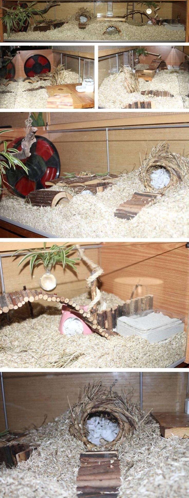 Ikea Hack Hamster Cage (Detolf) #hamsterplanet