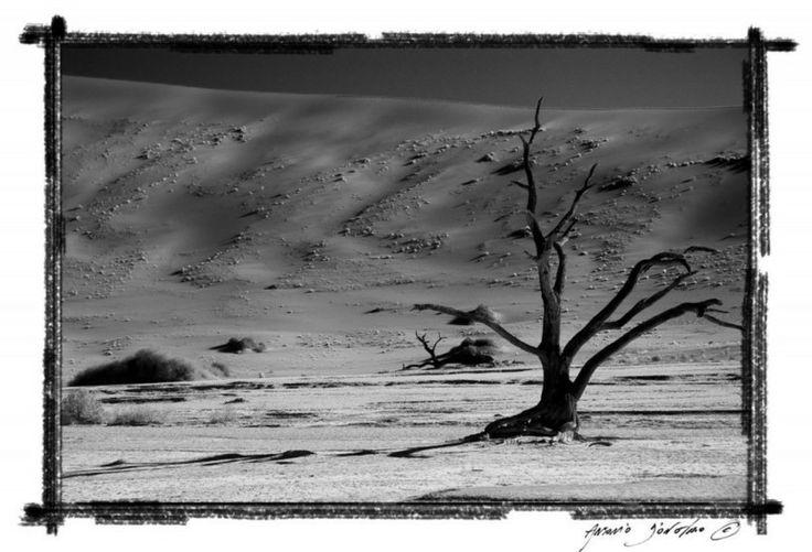 Namibia – il Grande Nulla