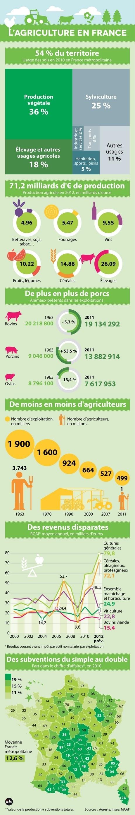 INFOGRAPHIE : les chiffres clés de l'agriculture en France - France Bleu