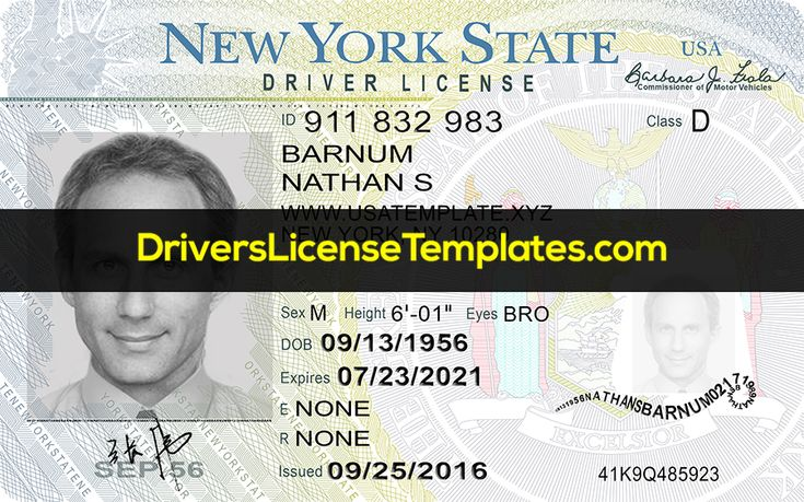 New york drivers license template psd 2020 in 2020