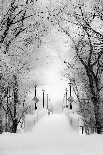 Winter, Assiniboine Park Bridge ~ Winnepeg, Canada