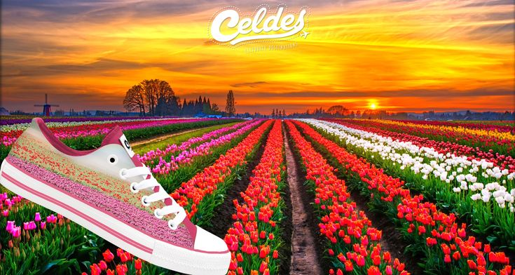 March 1st!  Welcome Spring🌸🌷🌺 Find yours at: http://celdes.com/en/all/259-tulip-field.html #exploreceldes #exploretheworld #welcomespring