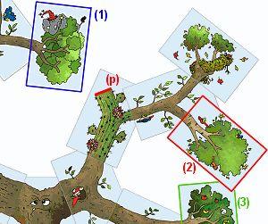 L'arbre magique de Granula, jeu de carte à imprimer