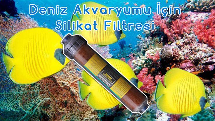 Deniz Akvaryumu İçin Su Arıtma Filtreleri
