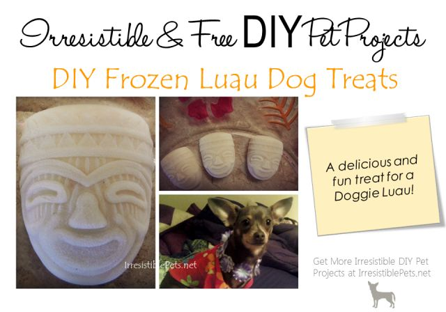DIY Frozen Luau Dog Treats - Irresistible Pets  Can get different ice trays for different events