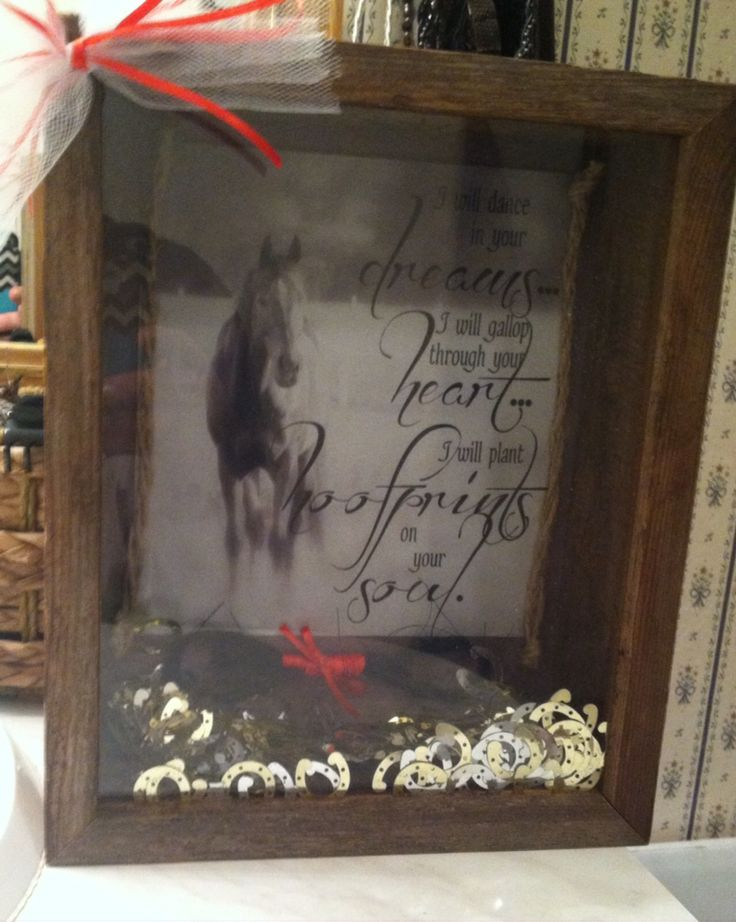 Shadow box for my sister who had to put down her horse