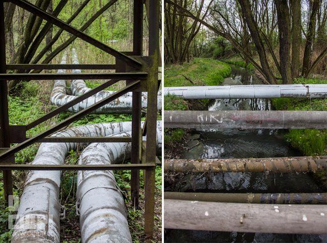 O ciup!: Forest pipes www.ociup.pl by Kaja Świętochowska