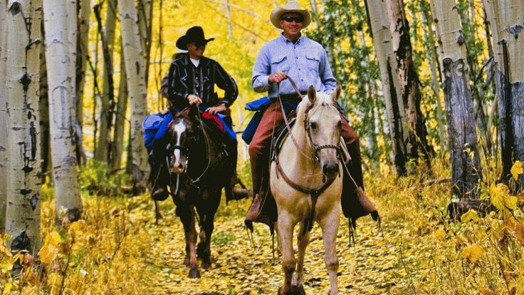7 Incredible Horseback Riding Trips in Colorado - Horseback riding through Colorado's golden aspen leaves – near Idaho Springs, Colorado