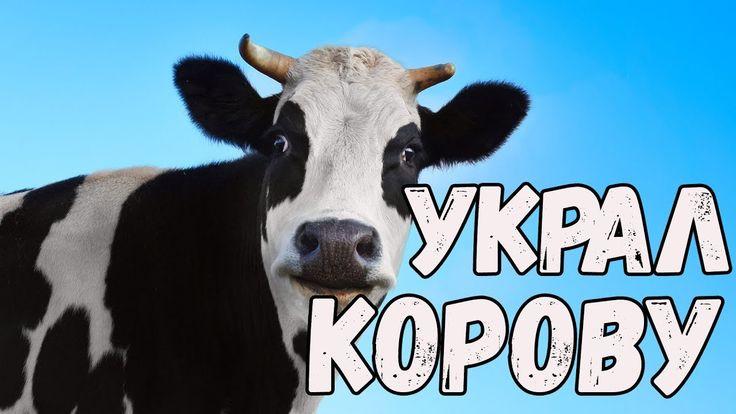 Приколы с животными 2017 Ну очень смешные животные Украл корову Новые ви...