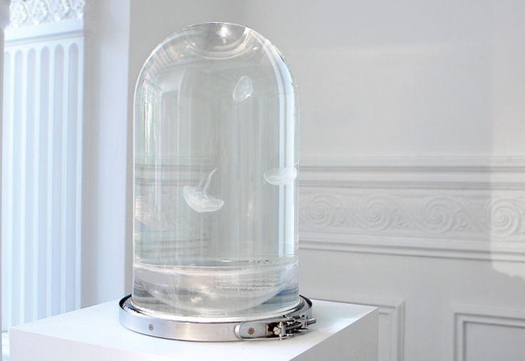 unculturedmag: Ce réservoir est Jellyfish Straight Out de Goldfinger Si vous n'êtes pas un fan de l'ordinaire, envisager d'investir dans le Darwin Tank-James Bond des réservoirs de poissons.  Créé par deux designers derrière le site Darwin Sect, l'aquarium de verre de haute technologie est faite pour abriter les méduses et est livré avec un système continu de filtration qui les maintient en vie (tout un système d'éclairage à LED multi-spectre vous permet de les voir clairement).  Ajouté…
