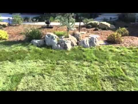 Sod Services in Wichita, Kansas - 13 Best Sod Services - Sod Installation Wichita, Kansas Images On