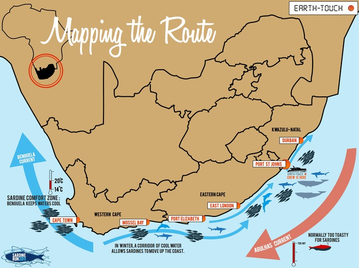 South Africa's Sardine Run map: I would love to witness this one year!