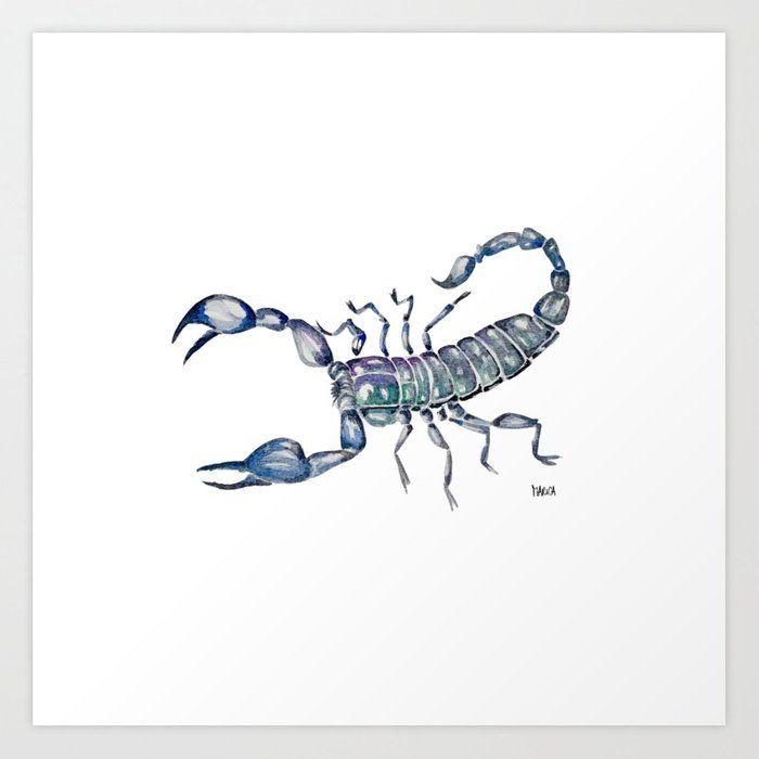 Black small scorpion frame