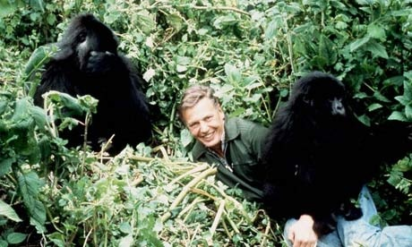 Sir David Attenborough passes natural history crown to Brian Cox