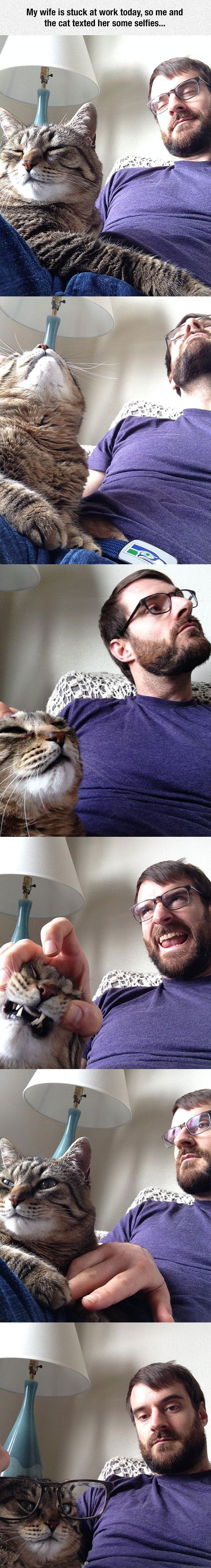Human And Cat Selfie Time