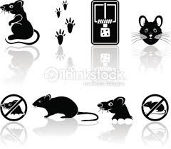 Image result for cartoon mouse footprints images