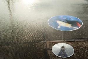 Kartell Tip Top tafel van Philippe Starck in een gelimiteerde oplage. De tafel aan de waterkant vloeit over in het water van de rivier; een spiegelbeeld van het onderwaterleven. Een weerkaatsing van schoonheid in een genummerde oplage met echtheidscertificaat.    Een bijzettafel om te gebruiken, om naar te kijken, om te bewonderen, om het glas water over te laten vloeien in het water van de tafel.
