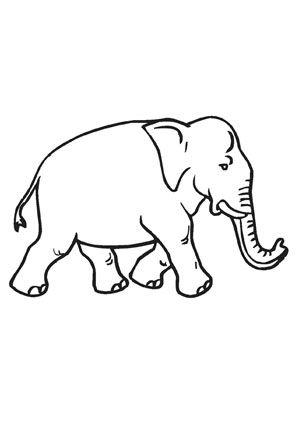 ausmalbild kleiner elefant zum ausmalen. #ausmalbilder | #