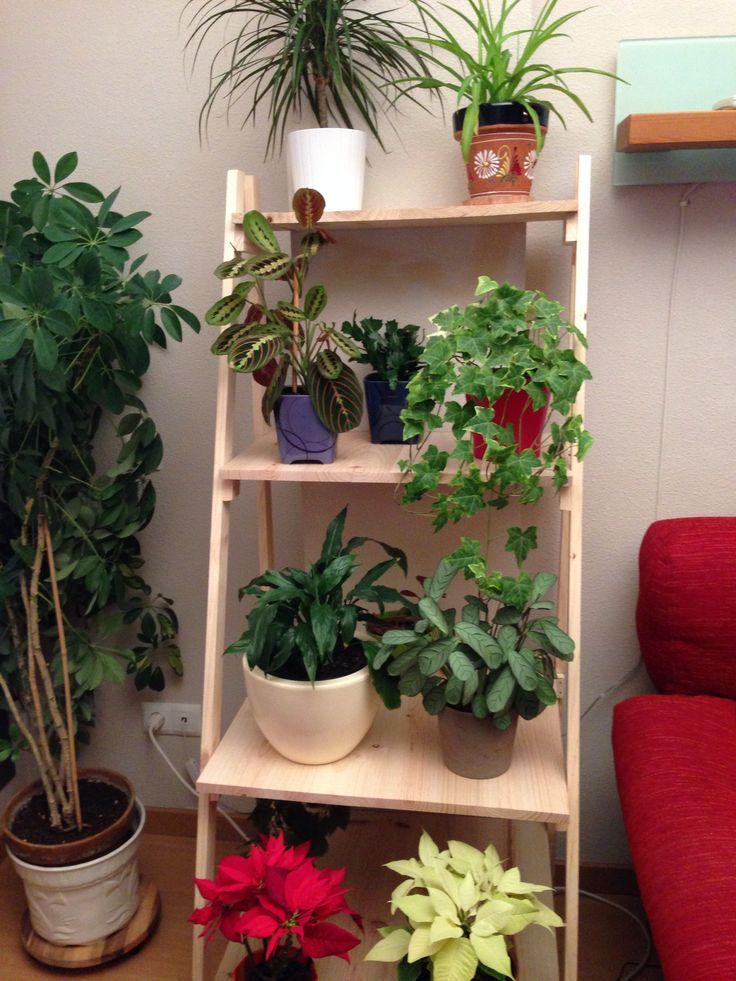 Escalera para plantas a medida