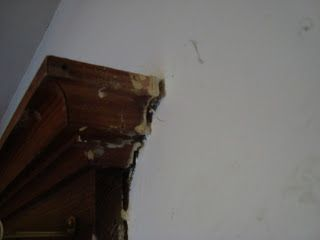 Wood Trim How To Remove And To Remove On Pinterest
