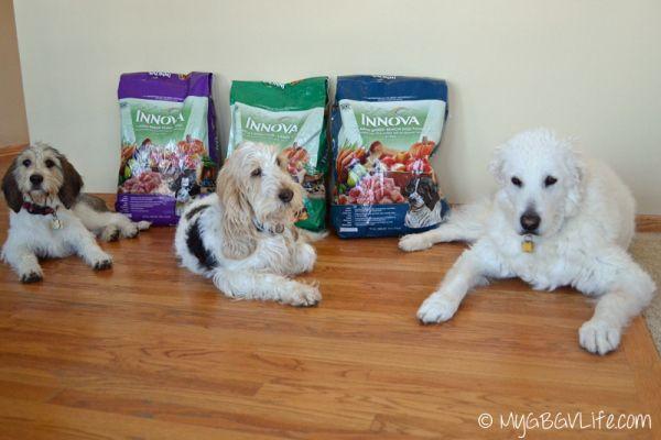 My GBGV Life Innova Dog Food