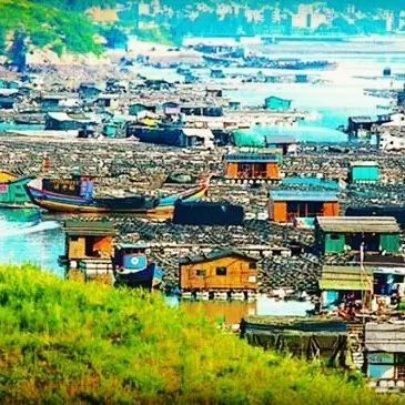The northeast of fujian, Xiapu county, people are very busy in May. Live by the sea, they earn a living by fishing, working in the mariculture areas, cultivating kelp off the seashore. #travel #traveling #TagsForLikes #TFLers #vacation #visiting #instatravel #instago #instagood #trip #holiday #photooftheday #fun #travelling #tourism #tourist #instapassport #instatraveling #mytravelgram #travelgram #travelingram #igtravel #sea #fishinglife