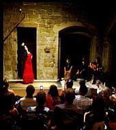 Spectacle de Flamenco dans le centre-ville
