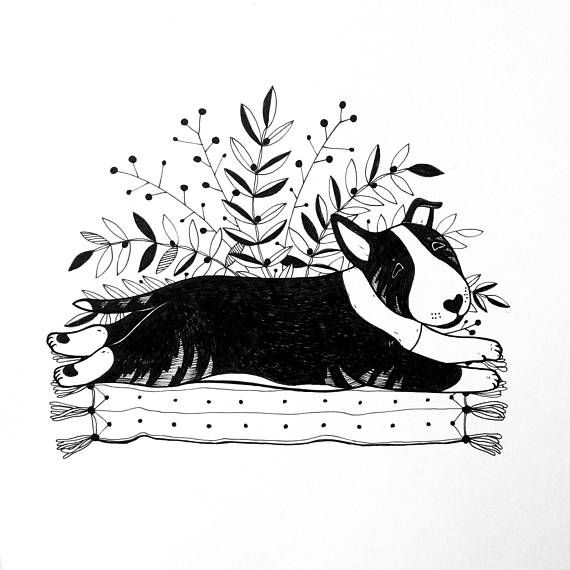 Ink bull terrier doodle by Anna Gavryliuk #albmadream #bullterrier #bullterrierart #bullterrierillustration