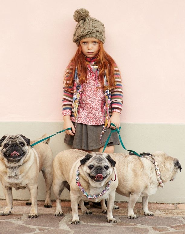 """Quinoa would like to know which part of """"I want seven identical pugs in beaded necklaces"""" you didn't understand. #MIWDTD"""