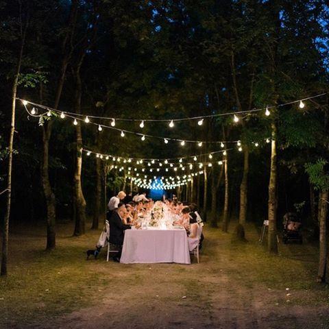 """""""Mi piace"""": 254, commenti: 4 - Wedding Wonderland (@weddingwonderlandblog) su Instagram: """"Nel frattempo sul blog... Oggi vi aspetta un matrimonio magico! Link in bio per vedere tutte le…"""""""