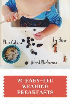 20 Baby-Led Weaning Breakfast Ideas   Great for toddlers and big kids too!   www.kiwiandbean.com