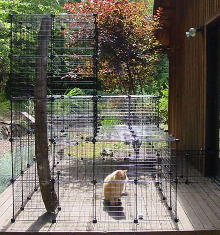 DIY Outdoor Cat Enclosure Or Run Tutorial using wire storage cubes. Easy to do! I followed this tutorial and built one for myself. I bought the storage cubes at Target. I am very pleased with the outcome (and so are my kitties!).