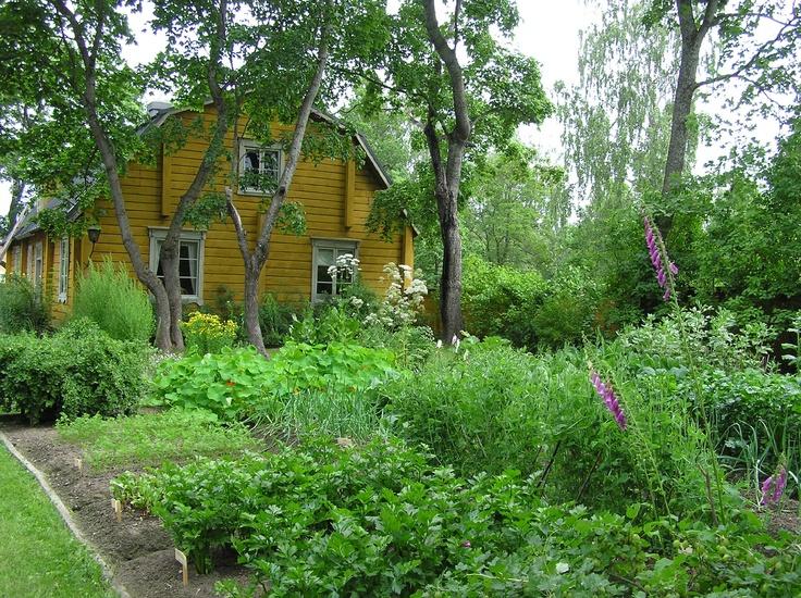 Aschanin talon kasvimaa on laadittu 1700-luvun ihanteiden mukaan. The vegetable garden of Aschan House is established following the ideals of the 18th century. Heinola, Finland