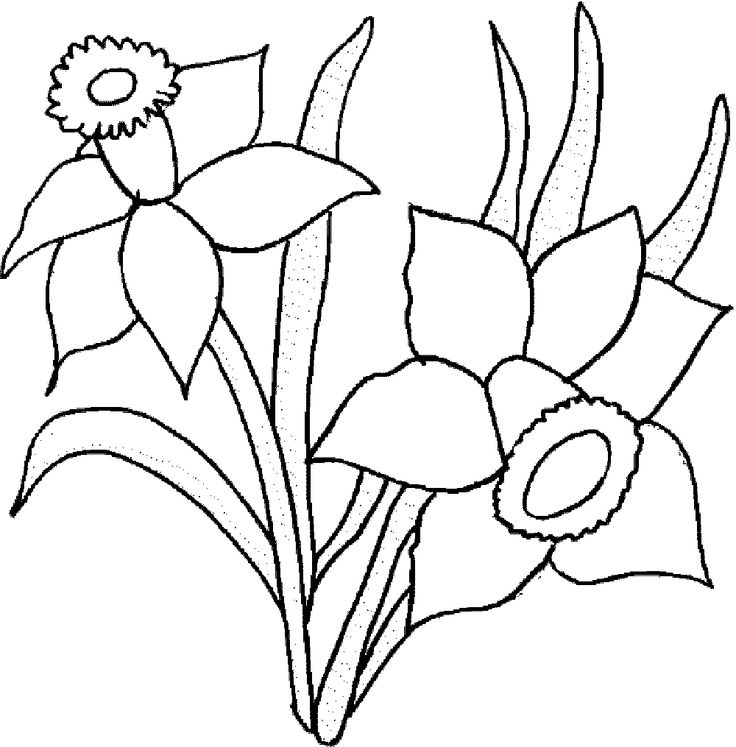 Colouring Template Flowers 149 Best Kids Pages Images On Pinterest