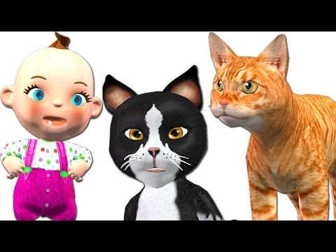 Little Baby Funny Cats Videos Compilation | Five Little Babies Three Little Kittens Nursery Rhymes - http://positivelifemagazine.com/little-baby-funny-cats-videos-compilation-five-little-babies-three-little-kittens-nursery-rhymes/ http://img.youtube.com/vi/CqEJ-JFLVQQ/0.jpg  Watch Little Baby Funny Cats Videos Compilation and Five Little Babies Three Little Kittens Nursery Rhymes Children's Songs. For More Rhymes Please … ***Get your free domain and free site bu