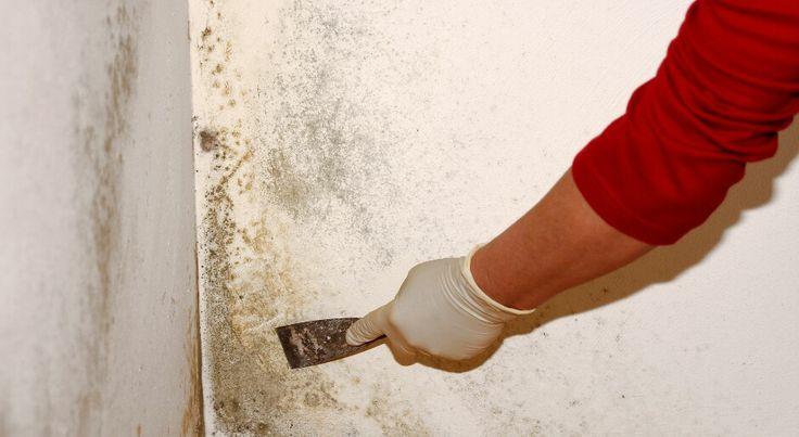 Избежать плесени на балконе, падения плитки в ванной, проблем с электрикой и канализацией и вздутия паркета  рассказываем, как обойти стороной самые частые промахи ремонта...