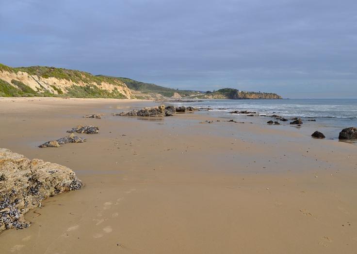 quiet beach walk