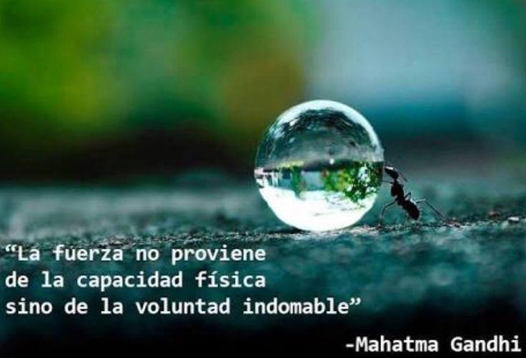 #frases #español #motivación #actitud #emprendimiento #éxito #vida facebook.com/SomewhereOverTheRainbowFrasesVida